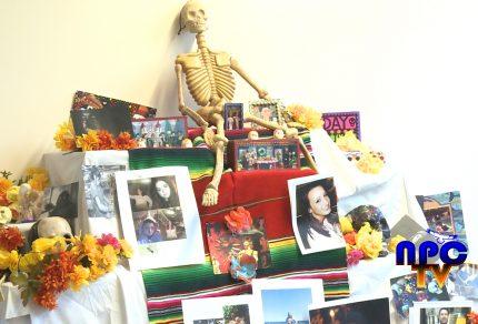 Picture of Dia Los Los Muertos decoration set up